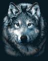 Silver`Wolf
