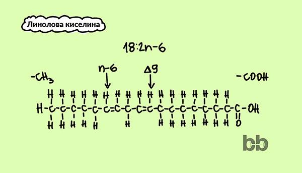 omega-3_мазнини