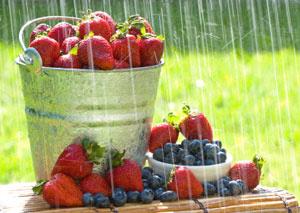 Пролетно освежаване на диетата