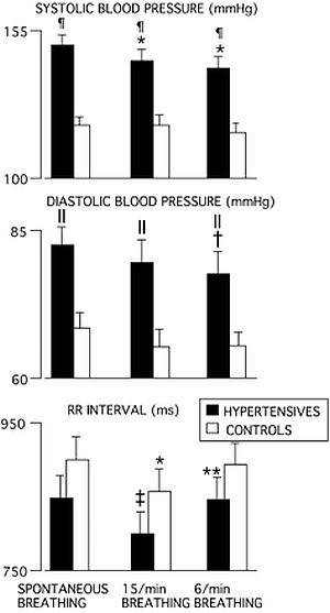 Тренировки и хипертония