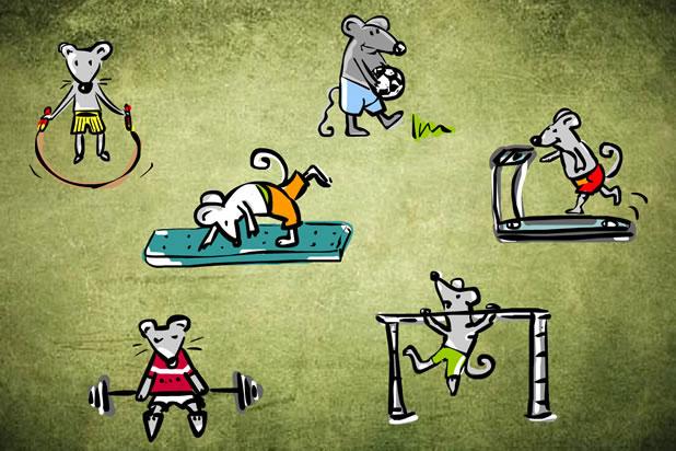 Има ли спортът запазено място в живота ви?