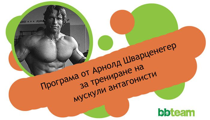 Програма от Арнолд за трениране на мускули антагонисти