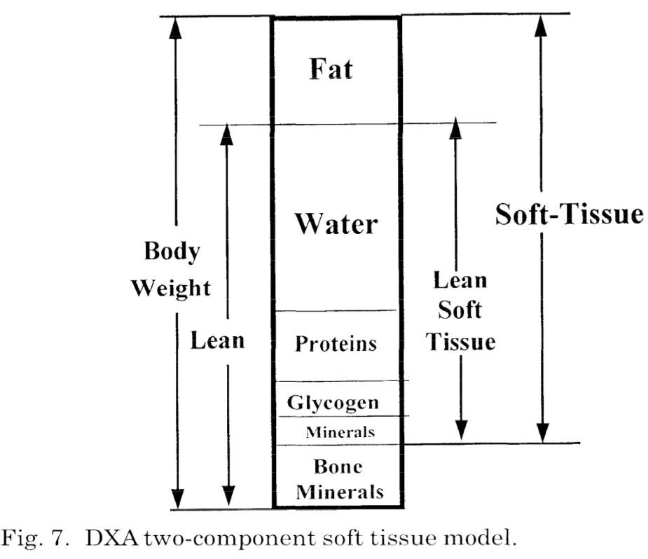 Pietrobelli et al. (1996)