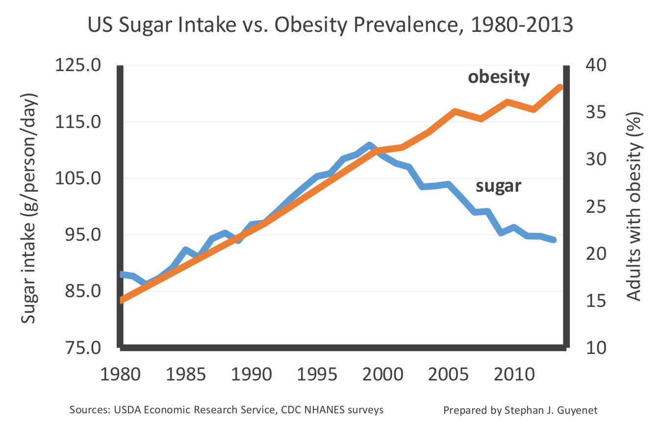 Взаимовръзка между приема на захар и затлъстяването