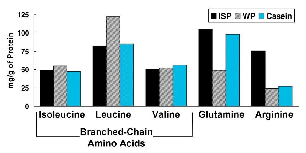 Съдържание на левцин в протеините