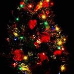 Магия, наречена Коледа...