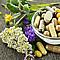 Натурални противовъзпалителни добавки (част I)