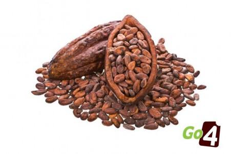Go4Raw Какаови зърна