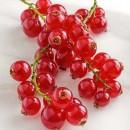 Френско грозде