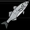 Рибни продукти