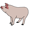 Свински продукти