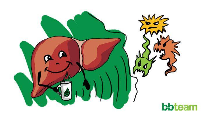 Добавки за черния дроб