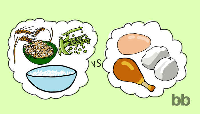 Животински vs растителен протеин при диабет тип II