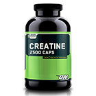 Optimum Nutrition Optimum Nutrition Creatine 2500