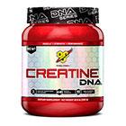 BSN BSN Creatine DNA